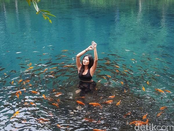 Travelers juga bisa berenang dan mengambil foto underwater di Situ Cipanten. Tentunya area berenang di sana telah ditentukan dengan kedalaman sekitar 2 meter. Situ Cipanten sendiri memiliki kedalam hingga 4 meter lebih pada bagian tengahnya.