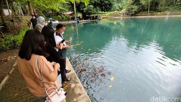 Situ Cipanten ini selalu ramai dikunjungi pengunjung dari berbagai daerah. Selain dari wilayah Cirebon, Indramayu dan Kuningan banyak juga pengunjung yang berasal dari daerah Jabodetabek.