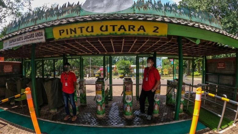 Taman Margasatwa Ragunan kembali dibuka untuk umum setelah tutup sejak Desember 2020