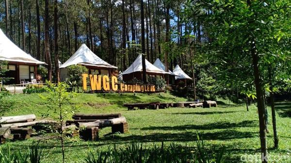 Dikelilingi kawasan wisata hutan pinus yang lebat, Grafika Cikole berada di area perbukitan seluas 9 hektre. Suhu pada siang hari adalah sekitar 20 derajat celsius, sedangkan malam hari mencapai 5 derajat celsius. (Wishnu Pradana/detikTravel)