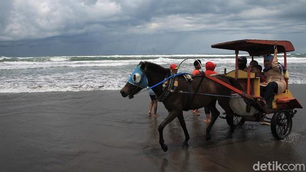 Selain itu, ada pula wisatawan yang menyewa dokar saat berlibur ke Pantai Parangtritis.