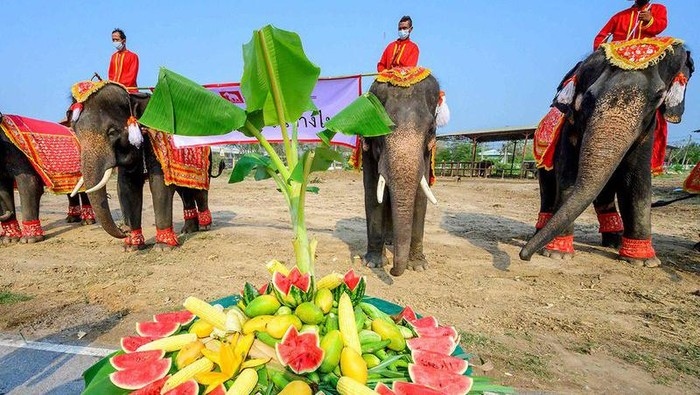 Hari Gajah Nasional di Thailand