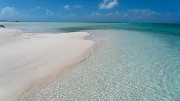 Harga pelelangan pulau akan dibuka mulai dari USD 19,5 juta. Berminat? (Concierge Auctions)