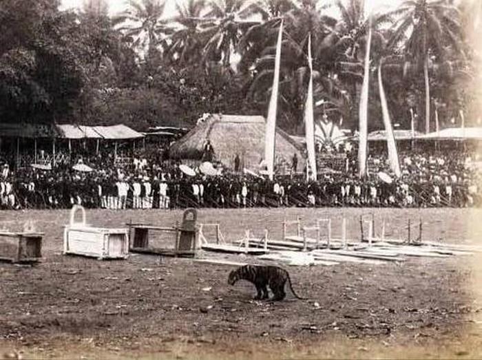 Zaman dulu Blitar punya tradisi Rampogan Macan. Tradisi ini sebagai tolak bala agar Blitar terhindar dari wabah dan erupsi Gunung Kelud.