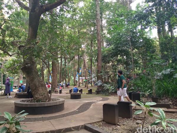 Taman hutan ini memiliki luas lebih dari 50.26 hektar.