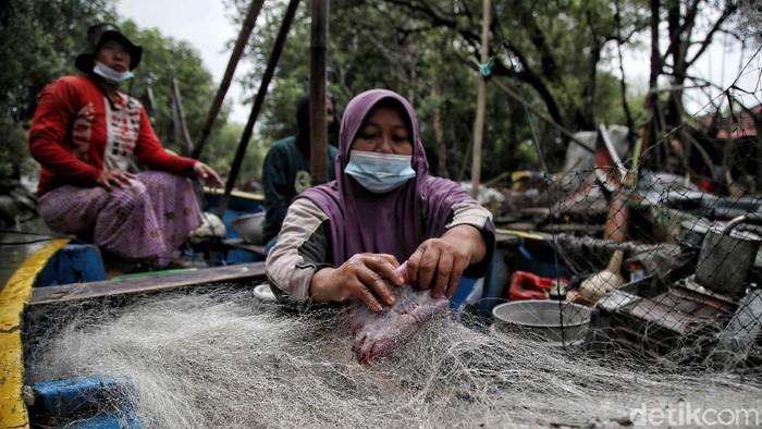 Sejumlah nelayan perempuan mencari ikan di tengah laut dari Dukuh Tambakpolo, Bonang, Demak, Jawa Tengah, Selasa (2/3).