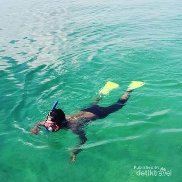 Melihat terumbu karang pulau pasoso