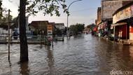 Duka Warga Terdampak Banjir 2 Bulan di Lamongan, Jalan Licin Hingga Kutu Air