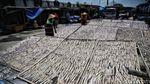 Melihat Sentra Pembuatan Ikan Asin di Demak
