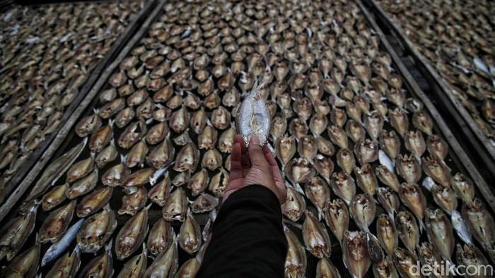 Kawasan Bonang, Demak, Jawa Tengah, merupakan salah satu sentra pembuatan ikan asin. Yuk kita lihat.