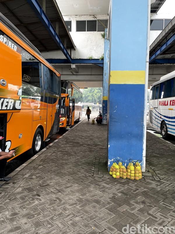 detikTravel menjajal bus ini pada awal minggu ini. Diketahui bahwa PO ini merupakan pemain baru dari trayek Malang-Jakarta.