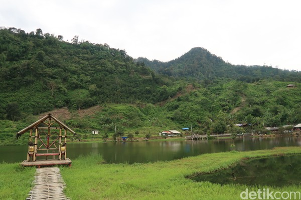Danau ini terletak di ketinggian 800 mdpl. (Bonauli/detikcom)