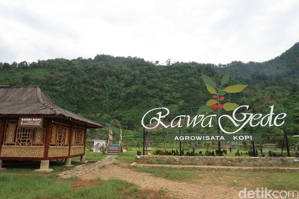 Dibuat jadi agrowisata kopi, kurang lengkap kalau belum mencoba kopi asli Rawa Gede. (Bonauli/detikcom)
