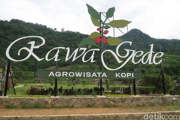 Situ Rawa Gede terletak di Desa Sirnajaya, Kecamatan Sukamakmur, Kabupaten Bogor, Jawa Barat. (Bonauli/detikcom)