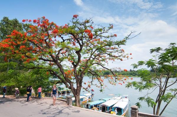 Dari hulu, Sungai Parfum melewati desa-desa hijau dan memiliki tanaman aromatik. (Getty Images/iStockphoto)