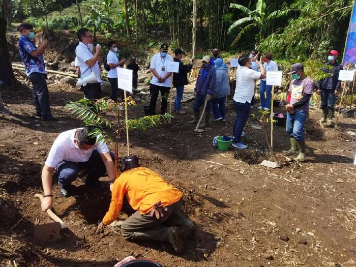 2.151 lahan milik PTPN VIII masuk kategori kritis