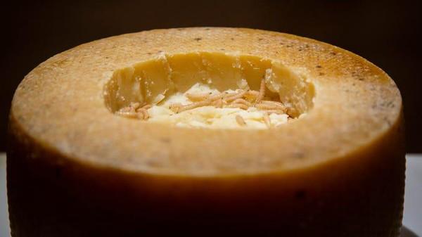Pada tahun 2009, Casu Marzu dinobatkan sebagai keju paling berbahaya di dunia. (Disgusting Food Museum)