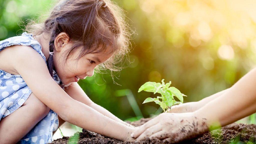 Sejarah Hari Lingkungan Hidup Sedunia, Diperingati Tiap 5 Juni