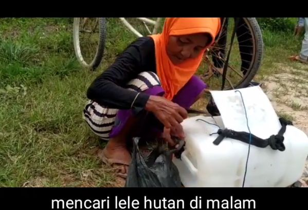 Salut! Nenek 68 Tahun Bertahan Hidup dengan Jualan Lele Keliling Kampung