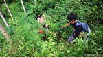 Serunya Belajar Mengenal Alam di Pegunungan Menoreh