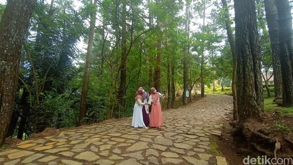 Pijar Park menyajikan keindahan alam yang masih asri. Terlebih lokasinya di lereng Gunung Muria yang memungkinkan traveler untuk menikmati keindahan kota Kudus dari ketinggian (Dian Utoro Aji/detikcom)