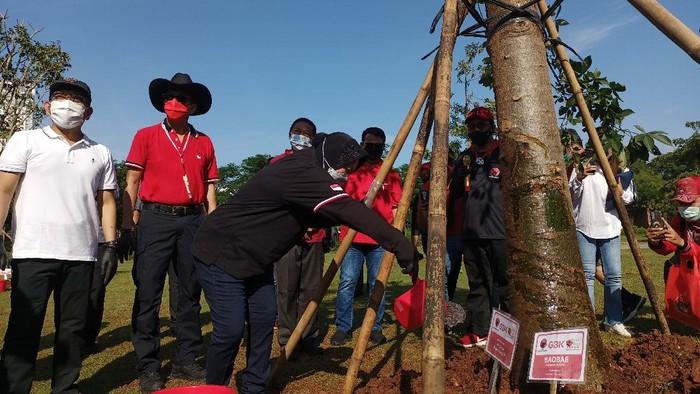 Kegiatan menanam pohon PDIP di hutan kota kompleks GBK, Jakarta, Minggu (21/3/2021).