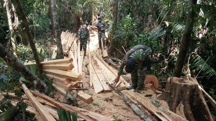 89 Batang kayu Meranti hasil penebangan liar berserakan di hutan Kalbar