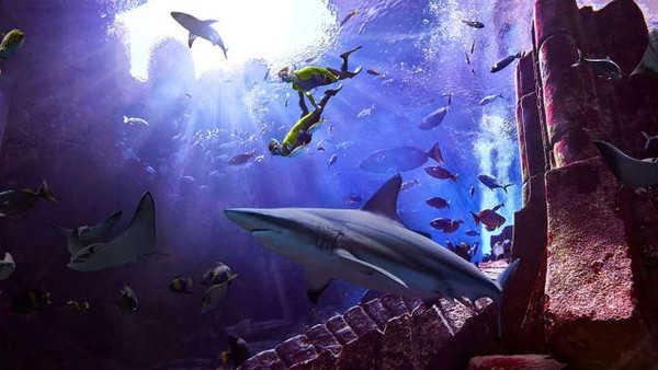 Fish Hospital di Atlantis Dubai merupakan resor yang menjadi rumah bagi 65.000 hewan laut. (2021 Atlantis, The Palm Dubai)
