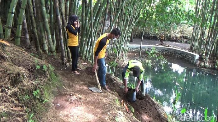 Hari ini merupakan Hari Air Sedunia. Warga lereng Gunung Semeru bersih-bersih dan menanam pohon di sumber mata air Tirtosari.