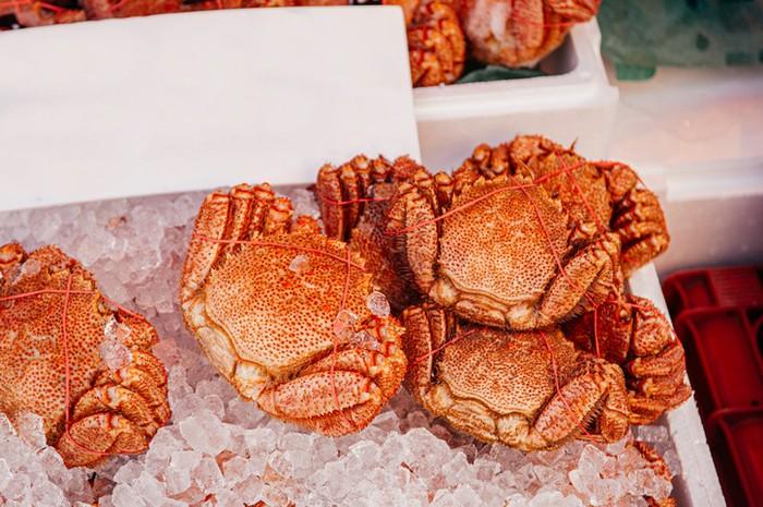 Fakta Kepiting Kegani Seharga Rp 5 Juta yang Diulas Sisca Kohl
