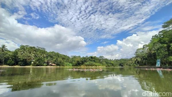 Inilah Situ Wangi di Ciamis yang bakal disulap jadi destinasi wisata air unggulan di Provinsi Jawa Barat. Untuk mewujudkan itu, anggaran sebesar Rp 15 miliar pun sudah disiapkan. (Dadang Hermansyah/detikTravel)