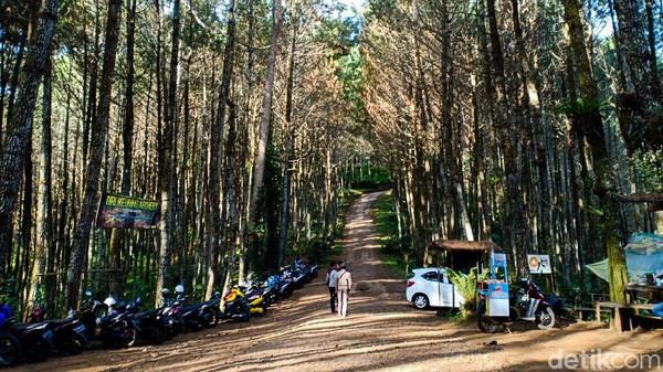 Wisata alam di Desa Cikidang, Lembang ini menyuguhkan suasana asri hutan pinus dan kesegaran udara yang tak ada di kota, itulah Hutan Pinus Giri Wening. Berbagai fasilitas ada di sini seperti tempat bermain anak, mushala, kamar mandi, camping ground hingga jembatan mini.