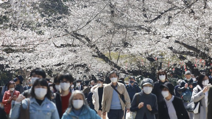 People wearing face masks to protect against the spread of the coronavirus walk under cherry blossoms in Tokyo, Tuesday, March 23, 2021. (AP Photo/Koji Sasahara)