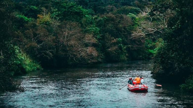 Gajah dan river tubing di Ekowisata Tangkahan