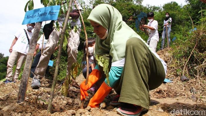 Kegiatan penanaman pohon dalam rangka menuju sejuta pohon dilaksanakan di Desa Tugu Utara, Puncak, Bogor, Jawa Barat, Rabu (24/3). Aksi yang dilakukan perusahaan produk makanan pendamping air susu ibu (MPASI) Nayz berkomitmen melakukan penanaman pohon sampai tahun 2024.