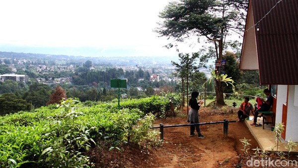 Sektor pariwisata terdampak cukup parah dari hantaman pandemi virus Corona yang melanda Indonesia. Tempat wisata di kawasan Puncak, Bogor, ini pun tak luput dari hantaman pandemi.