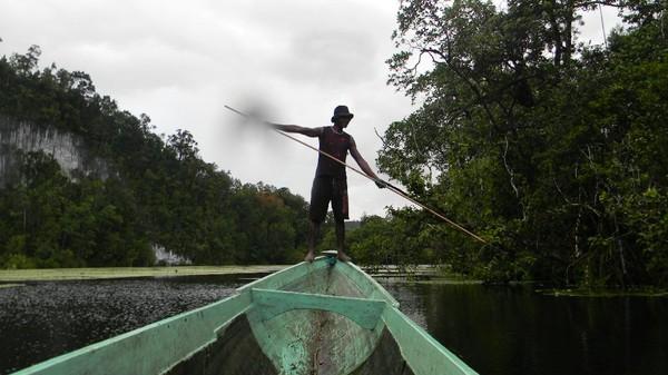 Suku Bauzi berburu buaya dengan cara tradisional. Pria suku Bauzi akan merajut dan menjalin tali yang terbuat dari serat pohon melinjo yang terkenal kuat. Tali ini dibuat seperti tali laso. Setelah tali siap, mereka lalu berperahu ke bagian sungai yang jadi sarang buaya. (CNN)