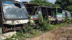 Intip Foto Kuburan Bus Rongsok di Tambun