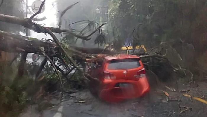 Mobil rusak tertimpa pohon di Puncak, Cianjur.
