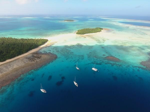 Kekayaan surga bawah lautnya menjadikan Tonga sebagai salah satu wisata diving kelas dunia. (Getty Images/iStockphoto)