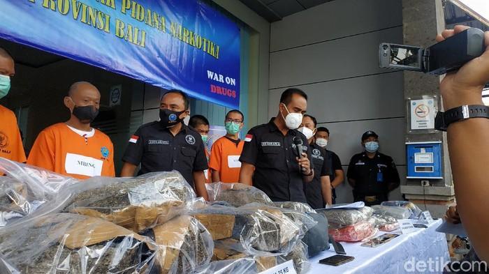 BNNP Bali tangkap 6 orang jaringan pengedar. Ganja seberat 30 kg disita (Tim detikcom)