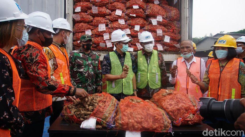 Ratusan Ton Jahe Impor Dimusnahkan Karena Terkontaminasi Cacing Gelang
