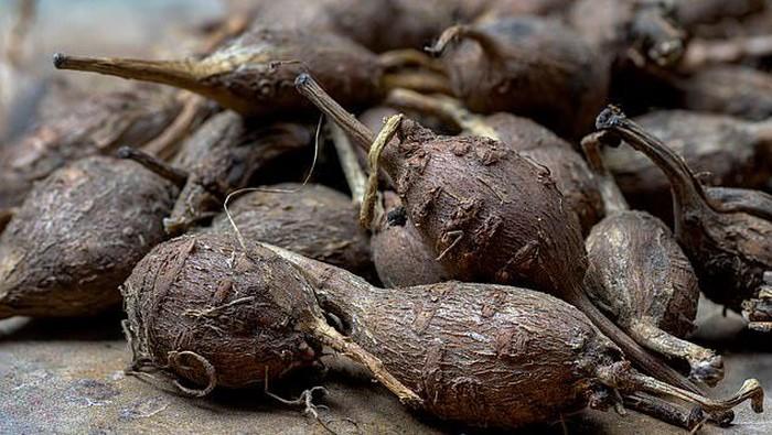 kacang kentang, makanan super asal Amerika yang tinggi serat
