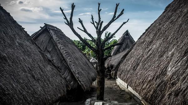 Keberadaan pulau Lombok yang menjadi bagian penting Bumi Gora ini tidak lepas dari kehadiran suku Sasak (suku asli Pulau Lombok).