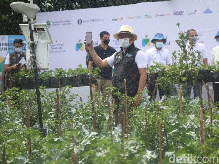 Ridwan Kamil menargetkan lahir 100 ribu patani baru