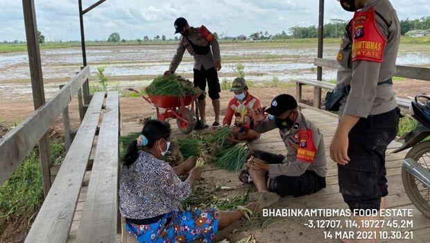 Kawal Food Estate, Polisi-Warga Kalteng Bangun Pondok Hasupa Hasundau