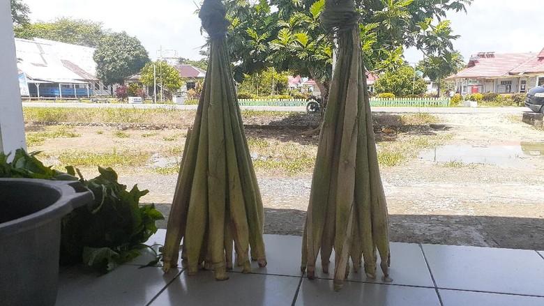 Sayur Lilin yang unik di Papua