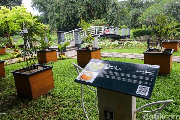 Di Kebun Raya Bogor juga ada Taman Durian yang dibangun sebagai upaya dalam mengenalkan durian dari Kalimantan. Jenis durian di taman ini adalah durian Kerantungan dan durian Lai Mas.