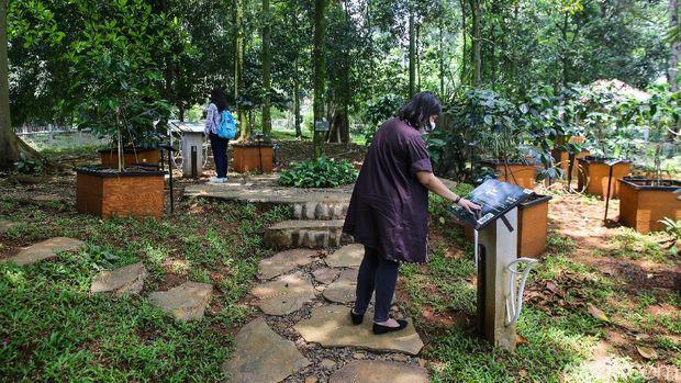Taman tematik di Kebun Raya Bogor