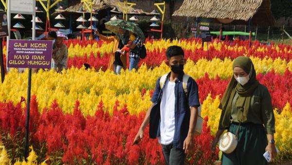 Wisata taman bunga di pinggiran Kota Palembang yang menyediakan titik-titik menarik untuk berfoto tersebut menjadi alternatif wisata bagi warga sekitar.